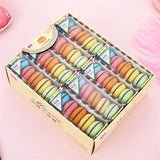 Macaron Colored Rubber Erasers (5 pcs/set)