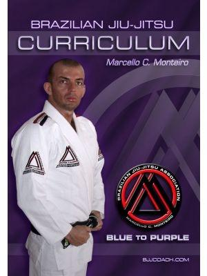"Blue to Purple Belt ""Step-by-Step"" Curriculum (4-Disc Set)"