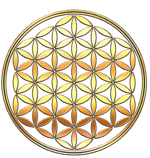 The Flower of Life with its traditional two bounding circles