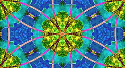 Flower of Life Lily Pads in the Pond