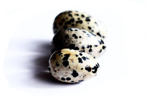 Dalmation Stone Yoni Egg - The Glass Dildo @ theglassdildo.co.uk
