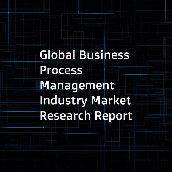 Global Business Process Management Industry Market Research Report