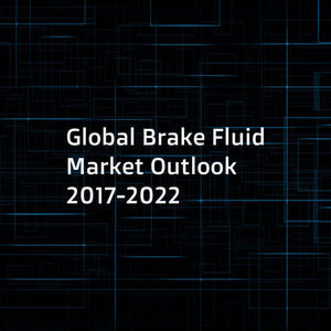 Global Brake Fluid Market Outlook 2017-2022