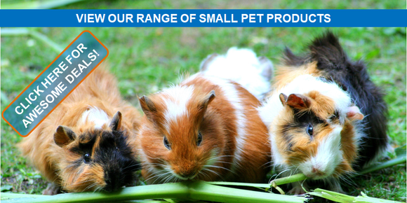 Singhms Retail Small Pet Products