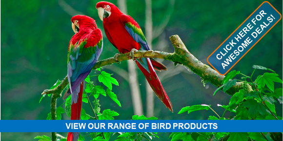 Singhms Retail Bird Products