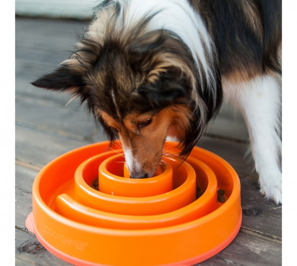 Outward Hound Fun Feeder Slo Bowl Various Designs