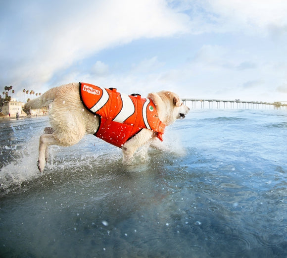 Outward Hound Fun Fish Life Jacket Various Sizes