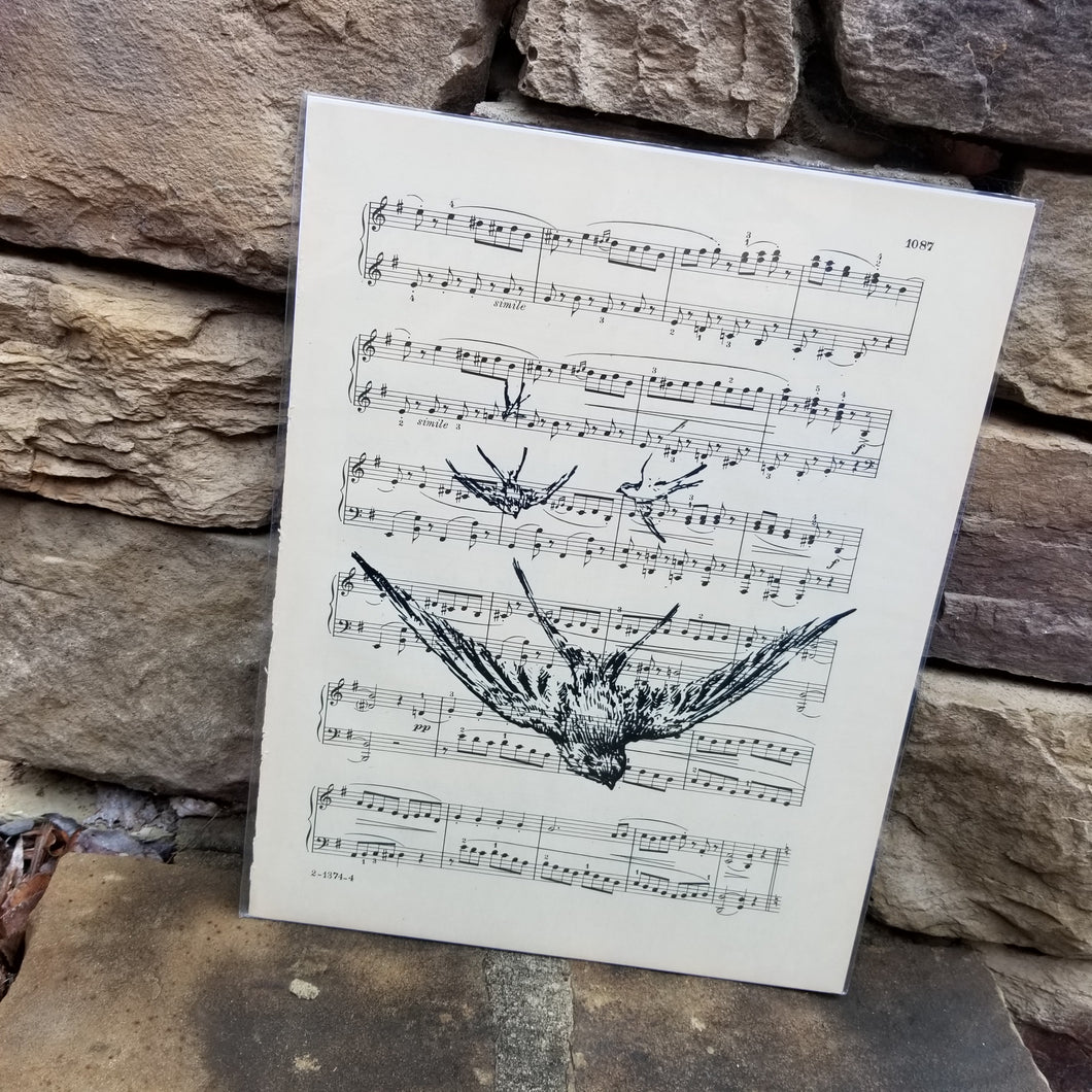 Music Art - Many Swallows in Flight
