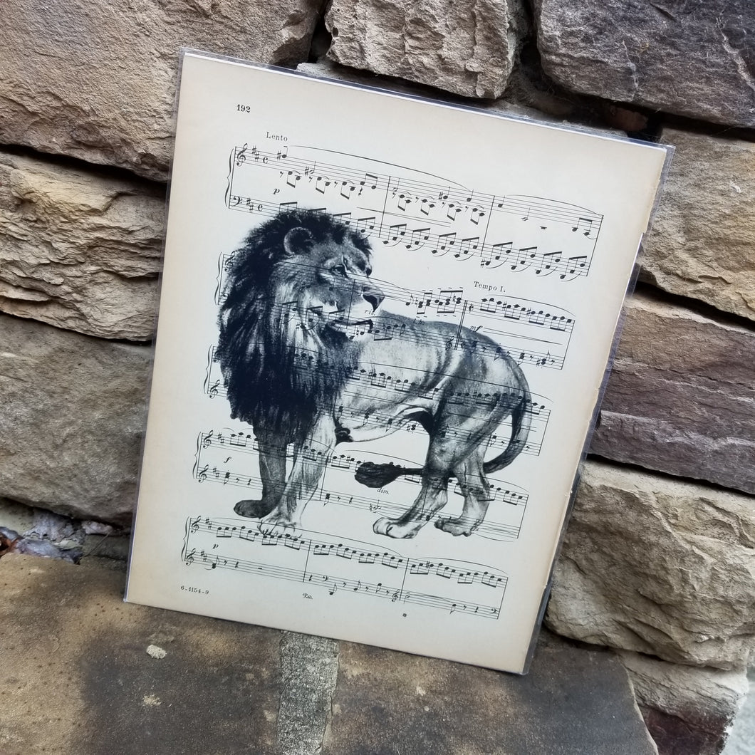 Music Art - Lion