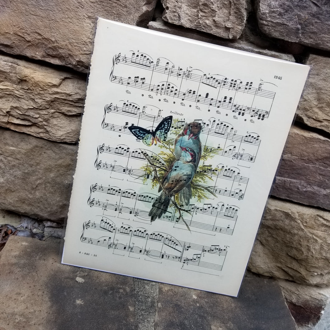 Music Art - Birds and a Butterfly