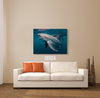 Image of Shark Canvas