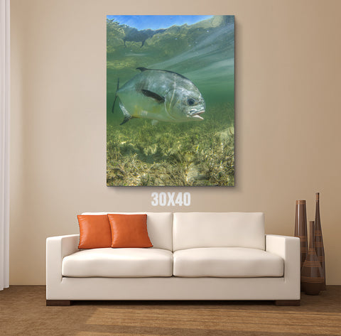 Simply Swimming Canvas