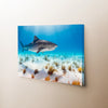 Image of Sunlight Shark Canvas