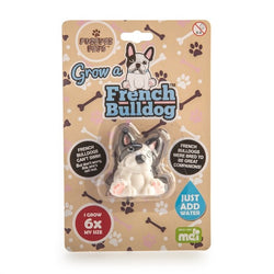 Grow Your Own French Bulldog