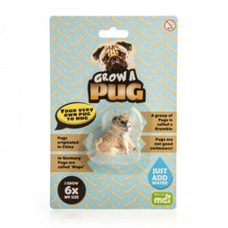Grow Your Own Pug