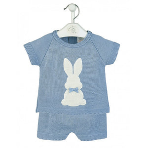 Blue 'Bunny' Top & Shorts
