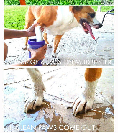 Portable Pet Foot Washer