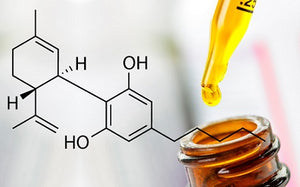 CBD Oil and Inflammation