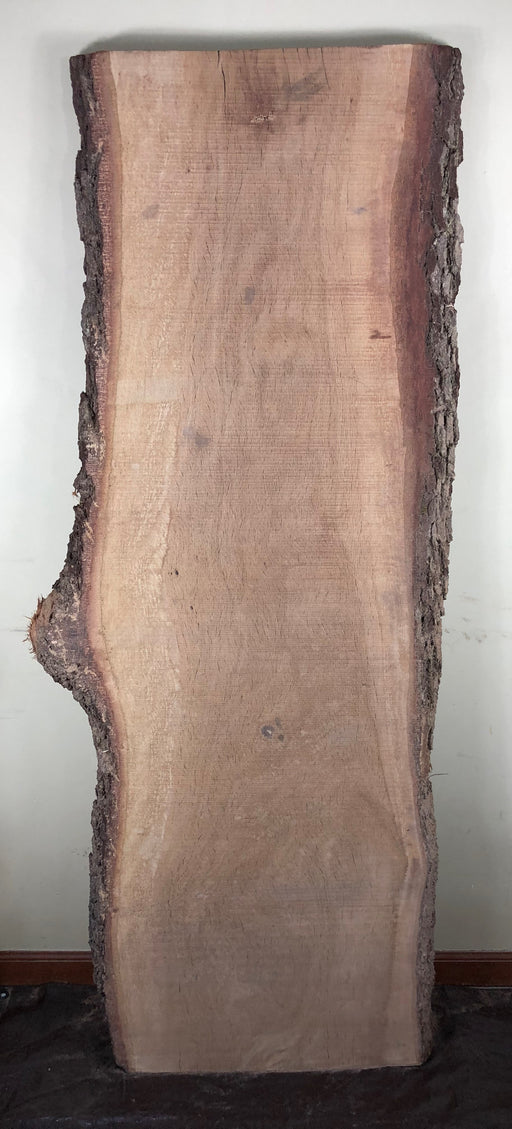 Live Oak Slab #LSK18002 (1)
