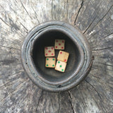 Vintage Dice with Shaker