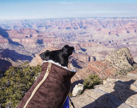 Instagram Follower @kylothedragon meets the Grand Canyon