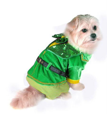 Little Leprechaun St. Patty's Day Dog Boy