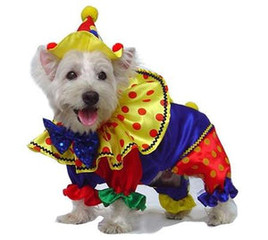 Pet Stop Store 0 Fun & Playful Polka Dot Red Yellow & Blue Clown Dog Costume