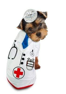 Pet Stop Store 1 Fun & Playful One Piece Doctor Barker Dog Costume