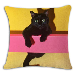 Pet Stop Store 12 / 45x45cm Fun & Playful Decorative Cat Lovers Pillow Covers