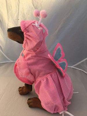 Pet Stop Store Lady Butterfly Dog Costume