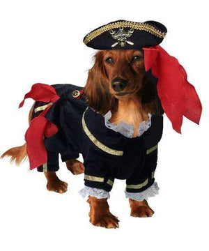 Pet Stop Store Buccaneer Pirate Dog Costume
