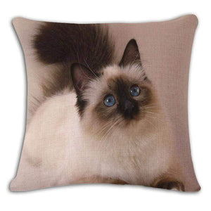 Pet Stop Store 3 / 45x45cm Fun & Playful Decorative Cat Lovers Pillow Covers