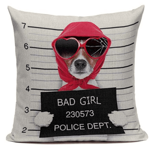 Pet Stop Store 45X45cm Fun & Playful Decorative Bad Girl Mugshot Pet Pillow Cover
