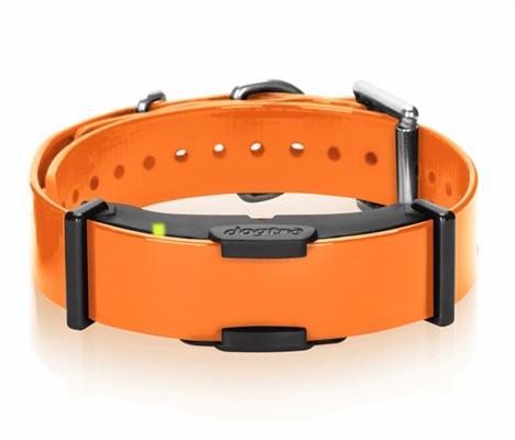 ARC Additional Remote Training Receiver Dog Collar