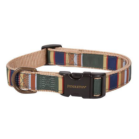 Badlands National Park Hiker Pet Dog Collar