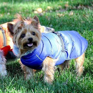 Pet Stop Store Blue Alpine Extreme Cold Puffer Dog Coat