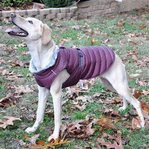 Pet Stop Store Purple Alpine Extreme Cold Puffer Dog Coat