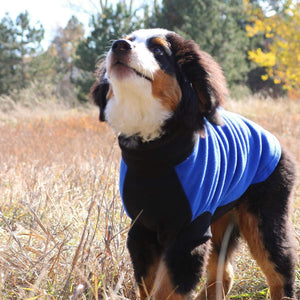 Pet Stop Store Comfy Blue and Black Highline Fleece Dog Coat