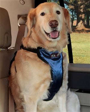 Pet Stop Store Deluxe Car Safety Dog Car Harness - 4 Sizes Available