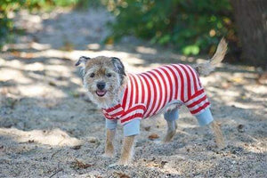 Pet Stop Store Fun & Playful Striped Red Pajama for Dogs