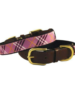 Pet Stop Store Lavender Lattice American  Collection Dog Collar & Leash
