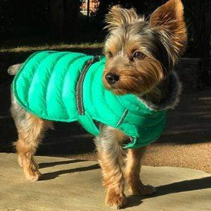Pet Stop Store Lime Green Alpine Extreme Cold Puffer Dog Coat