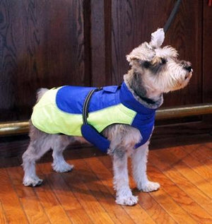 Pet Stop Store Lime Green & Blue Solid Alpine All Weather Waterproof Dog Coat