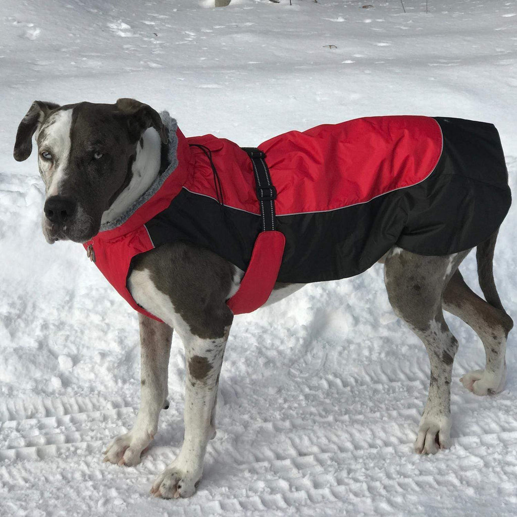 Pet Stop Store Red & Black Solid Alpine All Weather Waterproof Dog Coat