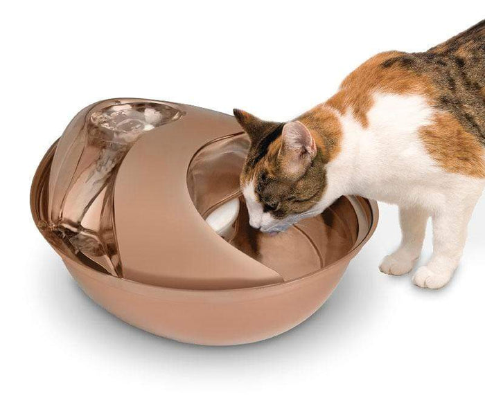 Rose Gold Stainless Steel Circulating Drinking Fountain for Pets