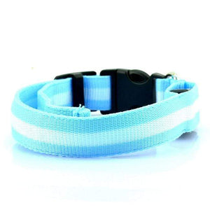 Pet Stop Store S (22-40cm) Blue Reflective LED Safety Dog Collars
