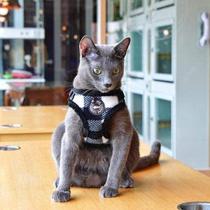 Pet Stop Store s black Figaro Cat Harness by Catspia® Red & Black
