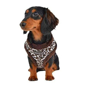 Pet Stop Store s brown Leonard Leopard Black & Brown Dog Harness