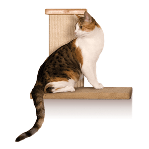 Pet Stop Store Sky High Climber Wall Perch for Cats