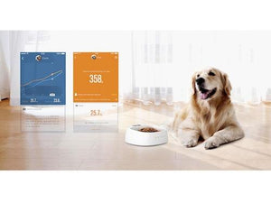 Pet Stop Store Smart Activity Pet Tracker Monitor w/Build In Calendar